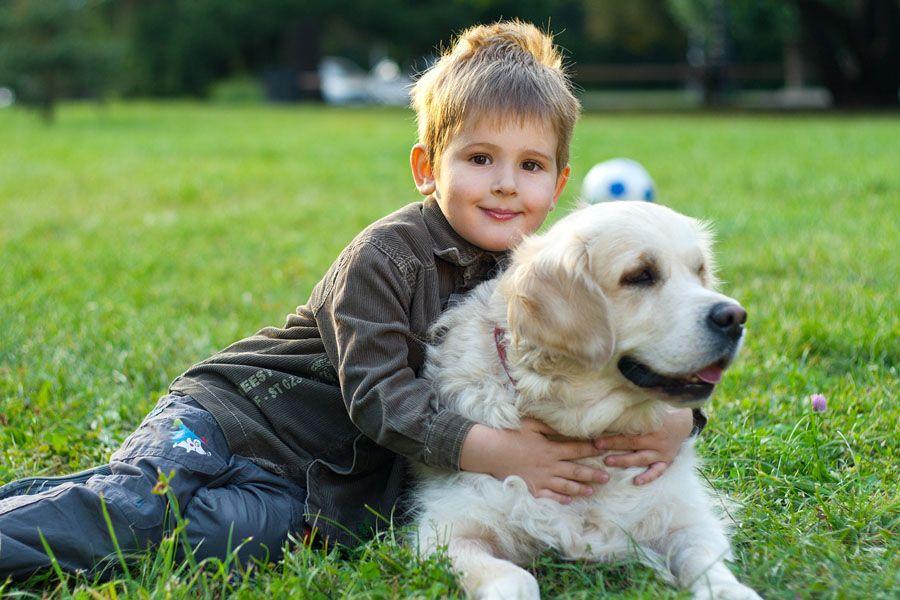 Chó có phải là người bạn tốt nhất của một đứa trẻ hay lo lắng?