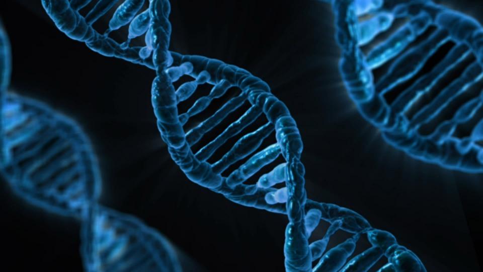 Bằng chứng di truyền mới cho thấy tâm thần phân liệt không phải là một loại bệnh