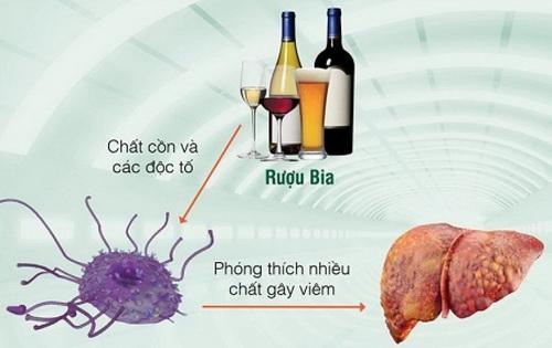Tác hại của thức uống chứa cồn với sức khỏe