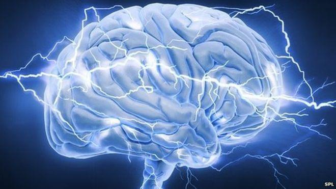 Não bộ phản ứng lại với sang chấn như thế nào?