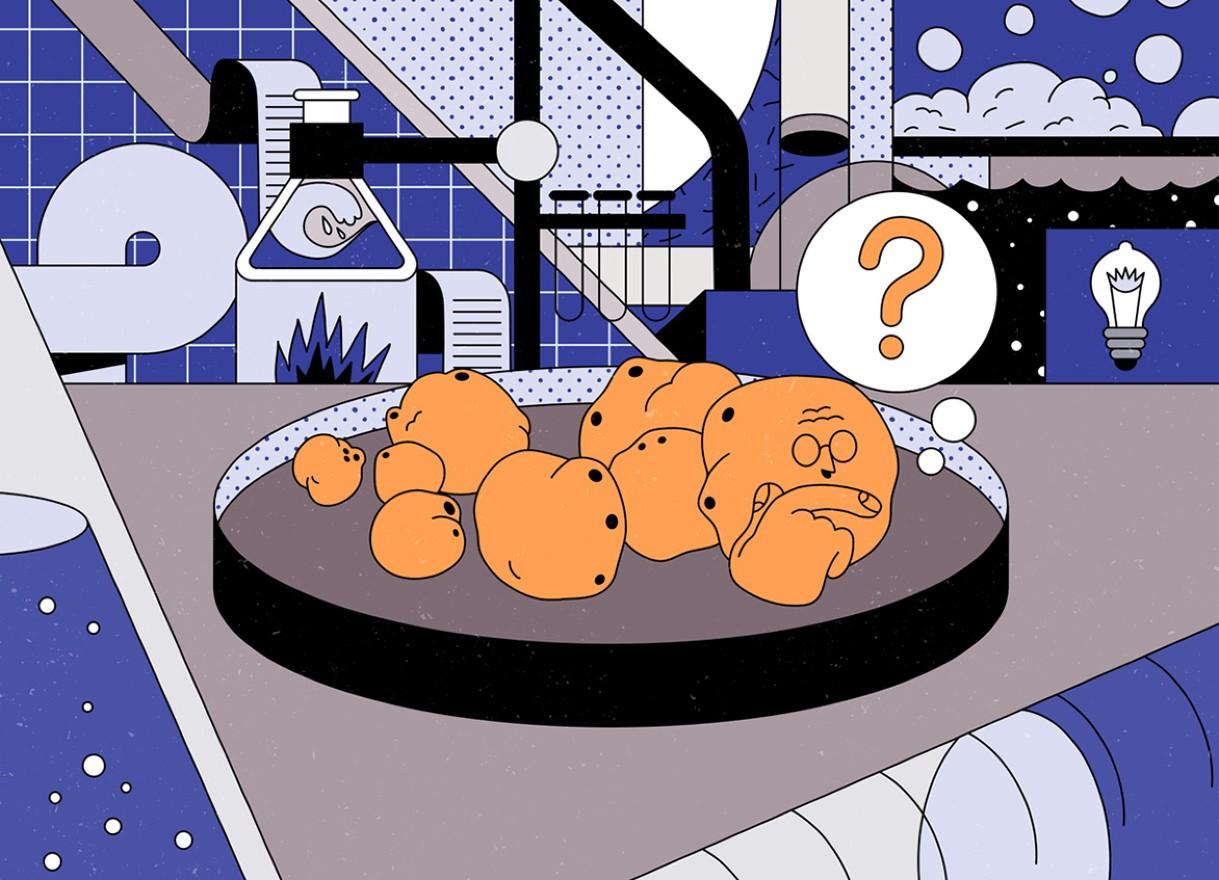 Liệu có thể tạo ra bộ não có ý thức trong phòng thí nghiệm?